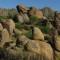 Scottsdale Seeks Cultural Resources Master Plan Input