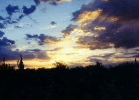 Thinc Design Publishes Summary of Outcomes for Scottsdale's DDC