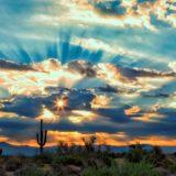 Sneak Peeks: Enjoy the New Year and Beautiful  Sunrise Photos