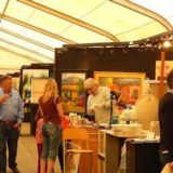 Arizona Fine Art EXPO Begins Friday, Jan. 13